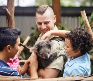 Koala Talk | Oakvale Wildlife