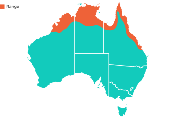 Oakvale Distribution Maps png Agile Wallaby