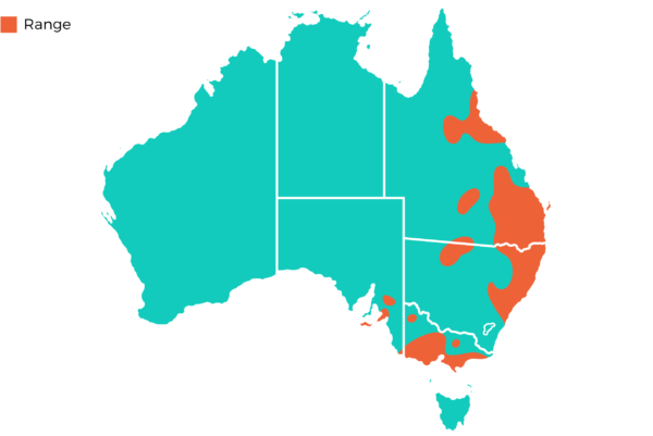 Oakvale Distribution Maps png Koala