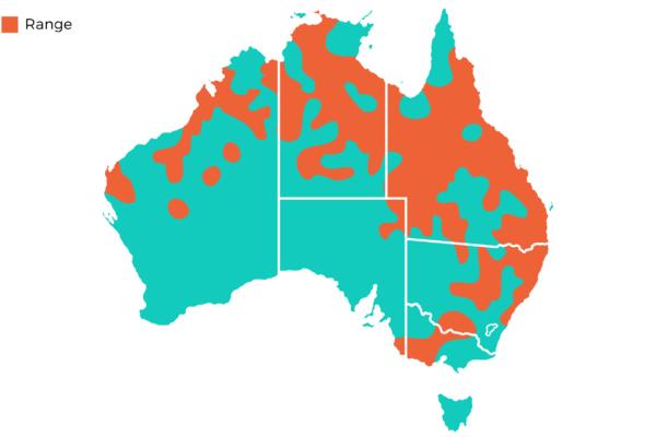 Oakvale Distribution Maps png Plumed Whistling Duck
