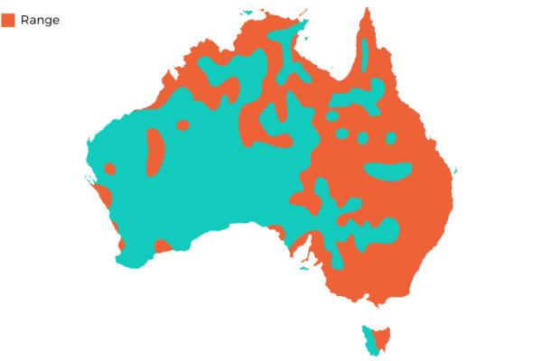 Oakvale Distribution Maps png Royal Spoonbill